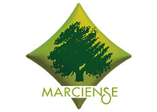 marciense